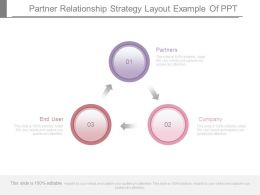 Partner Relationship Strategy Layout Example Of Ppt