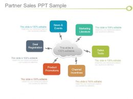 Partner Sales Ppt Sample