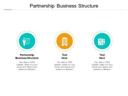 Partnership Business Structure Ppt Powerpoint Presentation Model Show Cpb