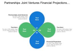 Partnerships Joint Ventures Financial Projections Zero Tolerance Corruption