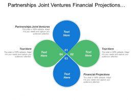 Partnerships Joint Ventures Financial Projections Zero Tolerance Corruption
