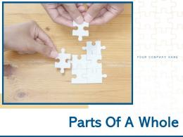 Parts Of A Whole Concentric Puzzle Project Management Business Strategy Process