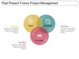 Past Present Future Project Management Powerpoint Topics