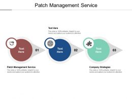 Patch Management Service Ppt Powerpoint Presentation Show Rules Cpb