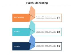 Patch Monitoring Ppt Powerpoint Presentation Infographics Guidelines Cpb