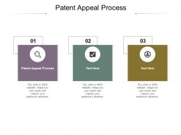 Patent Appeal Process Ppt Powerpoint Presentation Layouts Inspiration Cpb