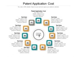 Patent Application Cost Ppt Powerpoint Presentation Show Graphics Pictures Cpb
