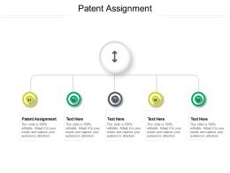 Patent Assignment Ppt Powerpoint Presentation File Templates Cpb
