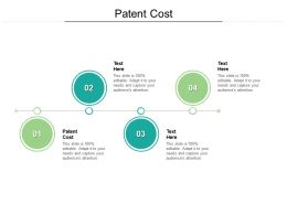 Patent Cost Ppt Powerpoint Presentation File Guidelines Cpb