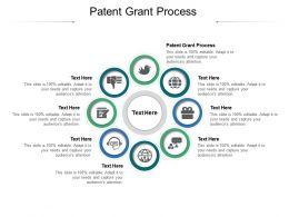 Patent Grant Process Ppt Powerpoint Presentation Icon Portfolio Cpb