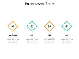 Patent Lawyer Salary Ppt Powerpoint Presentation Styles Design Ideas Cpb