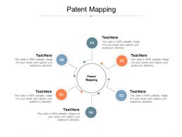 Patent Mapping Ppt Powerpoint Presentation Professional Graphics Cpb
