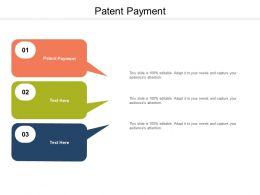 Patent Payment Ppt Powerpoint Presentation Outline Gallery Cpb