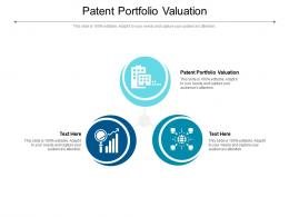 Patent Portfolio Valuation Ppt Powerpoint Presentation Show Display Cpb
