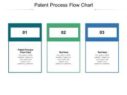 Patent Process Flow Chart Ppt Powerpoint Presentation Diagram Lists Cpb