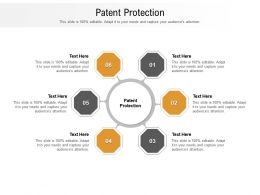 Patent Protection Ppt Powerpoint Presentation Gallery File Formats Cpb
