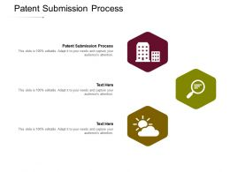 Patent Submission Process Ppt Powerpoint Presentation Layouts Templates Cpb