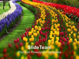 Path To Garden Nature PowerPoint Templates PPT Themes And Graphics 0213