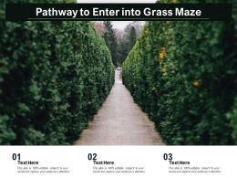 Pathway To Enter Into Grass Maze