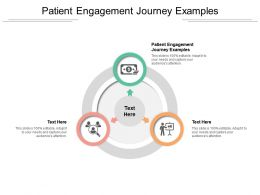 Patient Engagement Journey Examples Ppt Powerpoint Presentation Icon Model Cpb