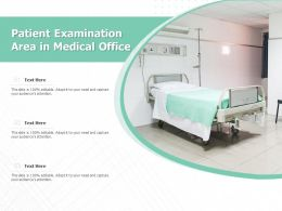 Patient Examination Area In Medical Office