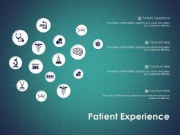 Patient Experience Ppt Powerpoint Presentation Ideas Influencers