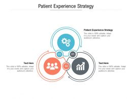 Patient Experience Strategy Ppt Powerpoint Presentation Icon Design Ideas Cpb