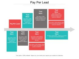 Pay Per Lead Ppt Powerpoint Presentation File Structure Cpb