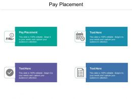 Pay Placement Ppt Powerpoint Presentation Pictures Mockup Cpb