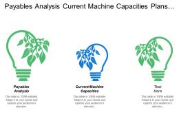 Payables Analysis Current Machine Capacities Plans Future Capacities
