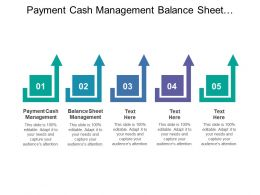 Payment Cash Management Balance Sheet Management Security Services