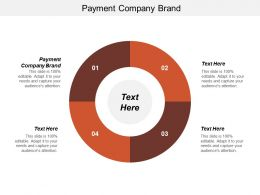 Payment Company Brand Ppt Powerpoint Presentation Inspiration Background Cpb