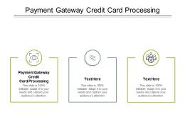 Payment Gateway Credit Card Processing Ppt Powerpoint Presentation Gallery Graphic Cpb