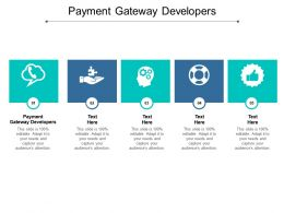 Payment Gateway Developers Ppt Powerpoint Presentation Icon Summary Cpb