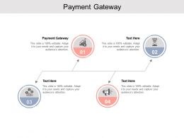 Payment Gateway Ppt Powerpoint Presentation Summary Example Introduction Cpb