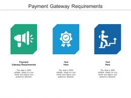 Payment Gateway Requirements Ppt Powerpoint Presentation Model Templates Cpb
