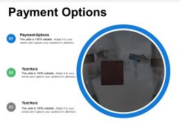 Payment Options Ppt Powerpoint Presentation Icon Inspiration Cpb