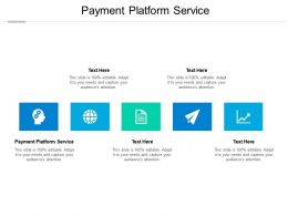 Payment Platform Service Ppt Powerpoint Presentation Layouts Outfit Cpb