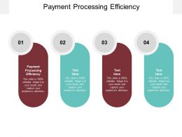 Payment Processing Efficiency Ppt Powerpoint Presentation Ideas Grid Cpb