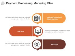 Payment Processing Marketing Plan Ppt Powerpoint Presentation Portfolio Graphics Download Cpb