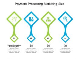 Payment Processing Marketing Size Ppt Powerpoint Presentation Infographics Example Topics Cpb