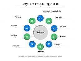 Payment Processing Online Ppt Powerpoint Presentation Show Objects Cpb
