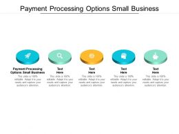 Payment Processing Options Small Business Ppt Powerpoint Presentation Icon Format Cpb
