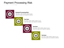 Payment Processing Risk Ppt Powerpoint Presentation Layouts Brochure Cpb