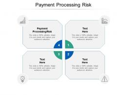Payment Processing Risk Ppt Powerpoint Presentation Slides Microsoft Cpb