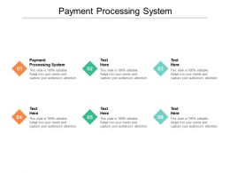Payment Processing System Ppt Powerpoint Presentation Styles Outline Cpb