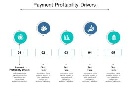 Payment Profitability Drivers Ppt Powerpoint Presentation Show Guide Cpb