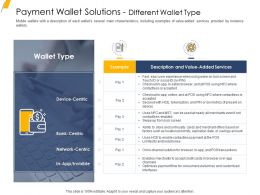 Payment Wallet Solutions Different Wallet Type Ppt Professional