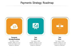Payments Strategy Roadmap Ppt Powerpoint Presentation Icon Outfit Cpb