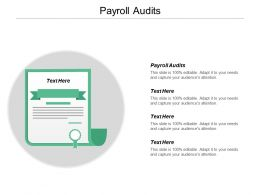 Payroll Audits Ppt Powerpoint Presentation Gallery Backgrounds Cpb